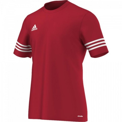 Adidas Entrada 14 Junior F50485 football jersey