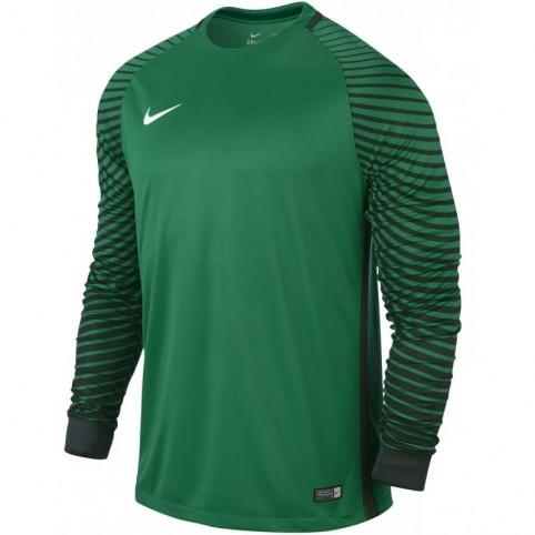 Nike Gardien LS M 725882-319 Goalkeeper jersey