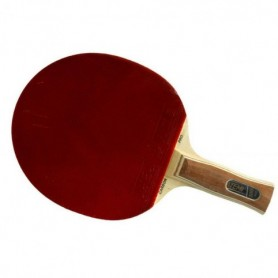 Atemi 3000 table tennis racket