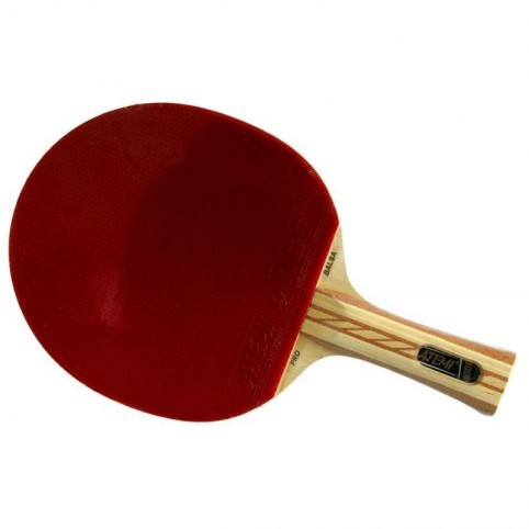 Atemi 4000 table tennis racket