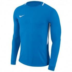 Goalkeeper jersey Nike Dry Park III LS M 894509-406