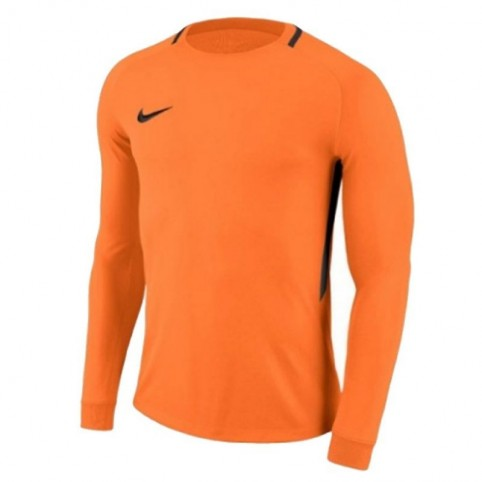 Goalkeeper jersey Nike Dry Park III LS M 894509-803