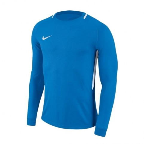 Goalkeeper jersey Nike Dry Park III LS Junior 894516-406