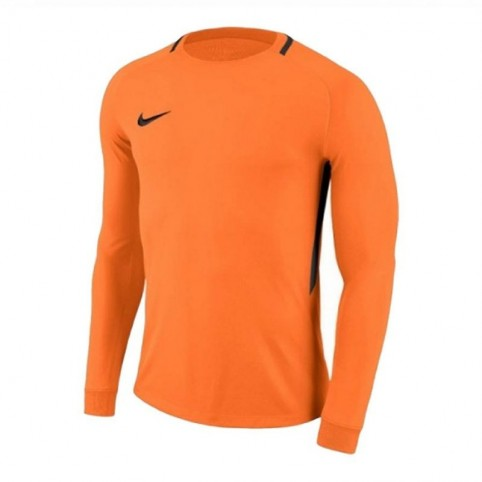 Goalkeeper jersey Nike Dry Park III LS Junior 894516-803