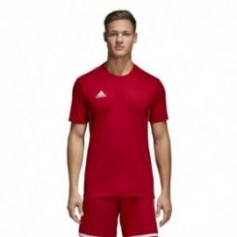 Adidas Core 18 Tee M CV3452 football jersey