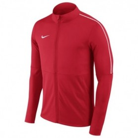 Nike Dry Park 18 Junior AA2071-657 football jersey