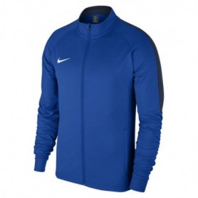 Nike Dry Academy18 Footbal M 893701-463 football jersey