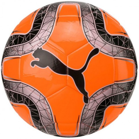 Football Puma Final 6 MS Trainer 082912 07