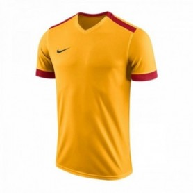 Football jersey Nike Park Derby II M 894312-739