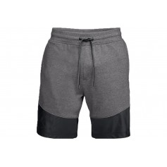 Under Armour Microthread Terry Shorts 1306477-019