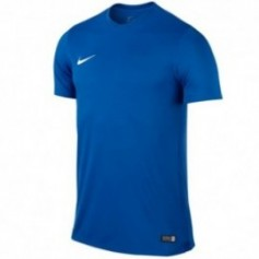Football jersey Nike PARK VI Junior 725984-463