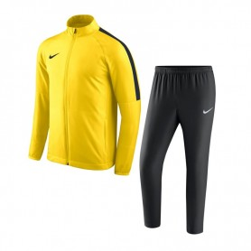 Dres Nike Academy 18 JR 893805-719