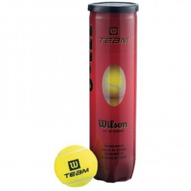 Wilson Team Practice Tennis Balls 4 pcs WRT111900