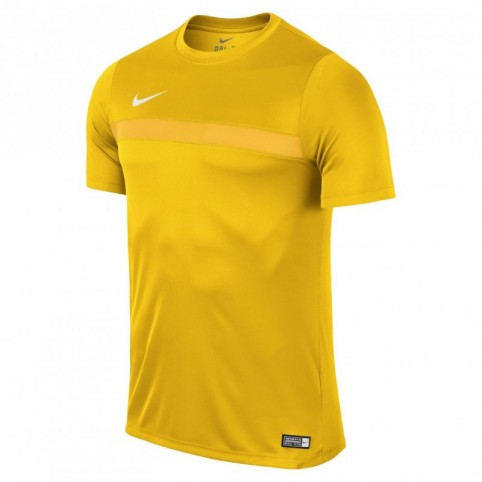 Nike Academy 16 M 725932-739 football jersey