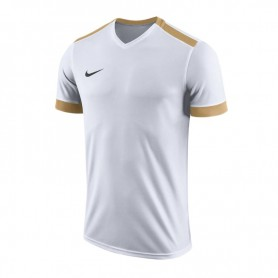 Nike Dry Park Derby II Jersey Junior 894116-100 shirts