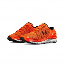 Under Armour Speedform Intake 2 M 3000288-600 training shoes